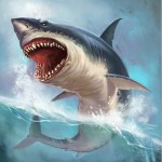 shark-picture-id542810866